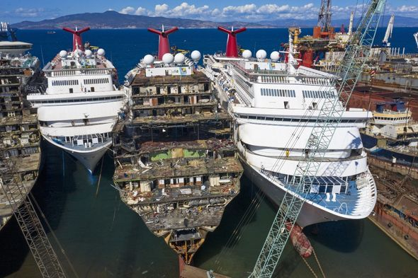 NGOs call upon authorities to sanction illegal exports of cruises